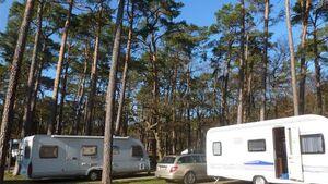 Auf der Ostseeinsel Usedom, direkt im Seebad Zinnowitz, liegt der von Bäumen umgebene 5-Sterne-Campingplatz Pommernland.