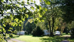 Campingplatz Auenland ist klimafreundlicher Betrieb