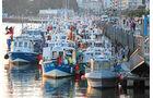 Fisch am Hafen von Boulogne-sur-Mer.
