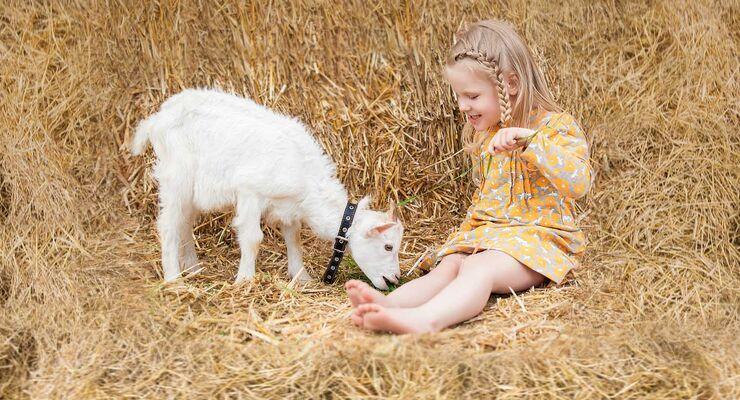Kind mit Ziege im Stroh