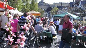 Moselpfirsich-Blütenmarkt in Cochem