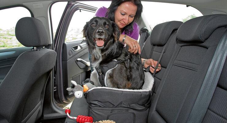 Reisen mit Tieren